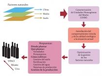 Metodologia de Zonamento integrado do Terroir