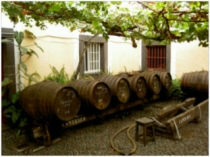 madeira-wine-company_2