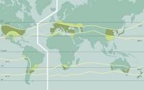 Mapa Mundia Viticola e Isoterm