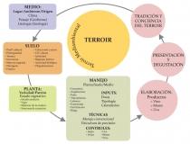 Mapa Terroir_Meio Ambiente