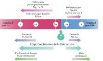 Quadro Influencia do pH na qualidade do Solo