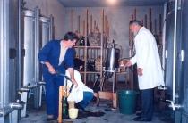 fermentação especial